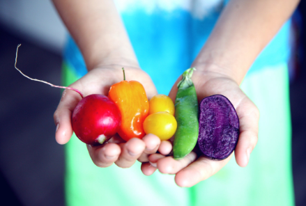 """Post image for Zemkopības ministrs Kaspars Gerhards: """"Vidi saudzējošas un veselīgas pārtikas sistēmas izveide ražotājiem būs gan iespēja, gan milzīgs sociālekonomisks izaicinājums"""""""